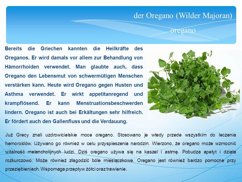 der Oregano (Wilder Majoran) oregano Bereits die Griechen kannten die Heilkräfte des Oreganos.