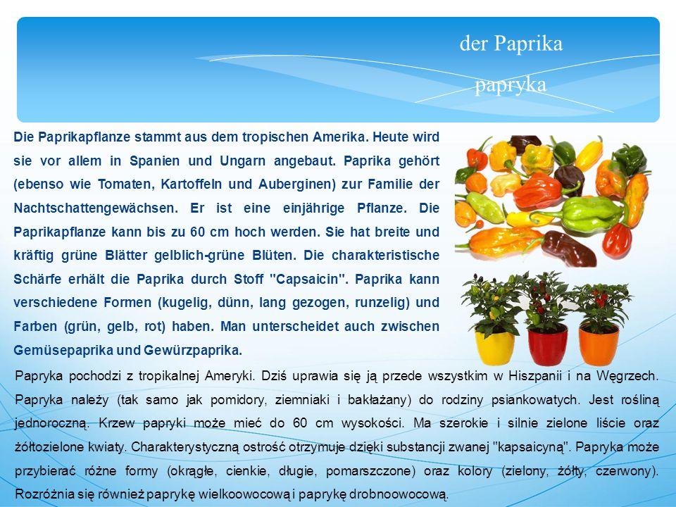 der Paprika papryka Die Paprikapflanze stammt aus dem tropischen Amerika.