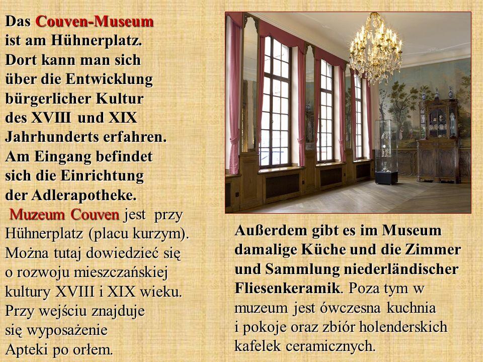 Außerdem gibt es im Museum damalige Küche und die Zimmer und Sammlung niederländischer Fliesenkeramik. Poza tym w muzeum jest ówczesna kuchnia i pokoj