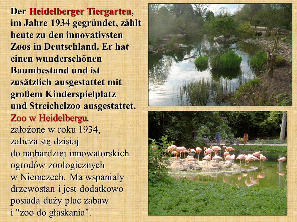 Der Heidelberger Tiergarten, im Jahre 1934 gegründet, zählt heute zu den innovativsten Zoos in Deutschland.