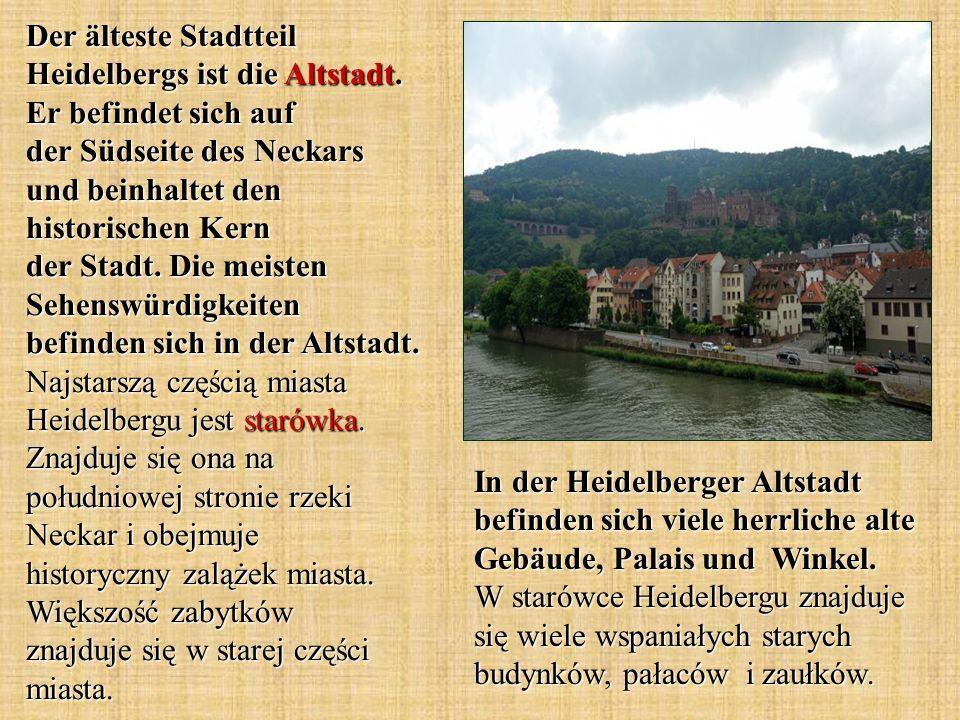 In der Heidelberger Altstadt befinden sich viele herrliche alte Gebäude, Palais und Winkel.