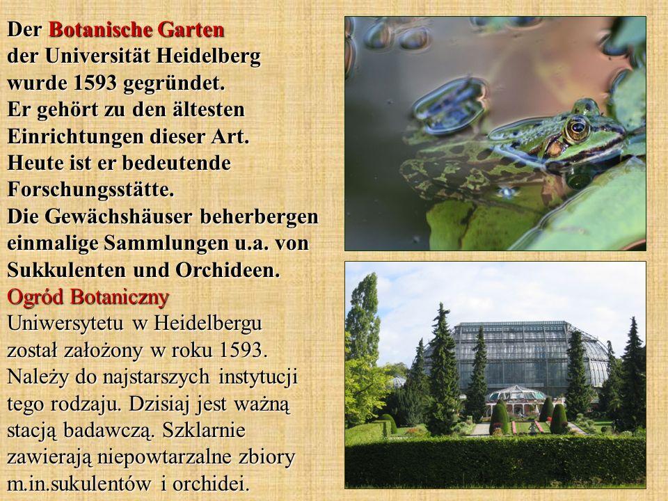 Der Botanische Garten der Universität Heidelberg wurde 1593 gegründet.