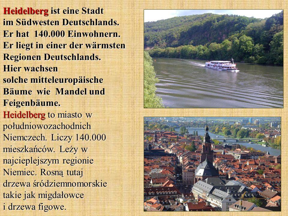 Der Name Molkenkur entspringt der 1852 von Albrecht Wagner erbauten Gaststätte Schweizerhaus , in der Kuren auf der Grundlage von Ziegenmolke angeboten wurden.