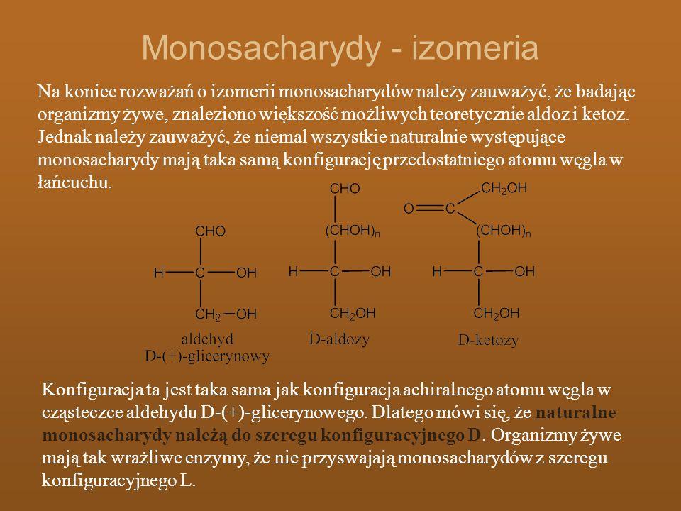 Monosacharydy - izomeria Na koniec rozważań o izomerii monosacharydów należy zauważyć, że badając organizmy żywe, znaleziono większość możliwych teore