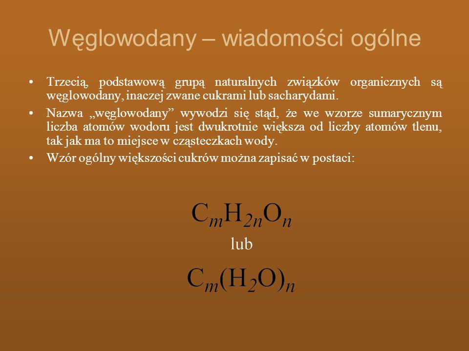 Węglowodany – wiadomości ogólne Trzecią, podstawową grupą naturalnych związków organicznych są węglowodany, inaczej zwane cukrami lub sacharydami. Naz