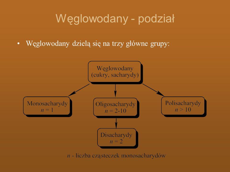 Węglowodany - podział Monosacharydy – związki zbudowane tylko z pojedynczych cząsteczek np.
