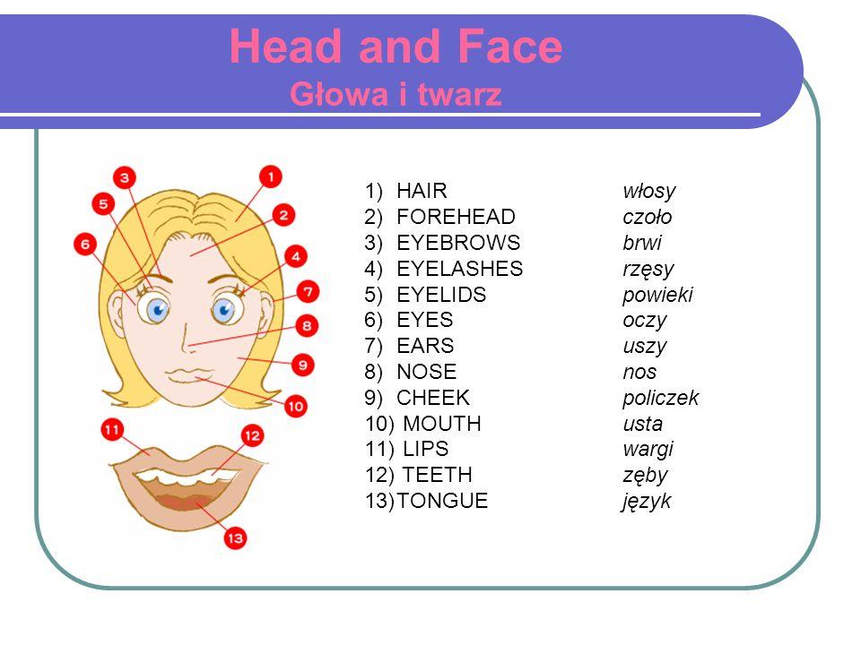 Head and Face Głowa i twarz 1)HAIR włosy 2)FOREHEAD czoło 3)EYEBROWS brwi 4)EYELASHES rzęsy 5)EYELIDS powieki 6)EYES oczy 7)EARS uszy 8)NOSE nos 9)CHE