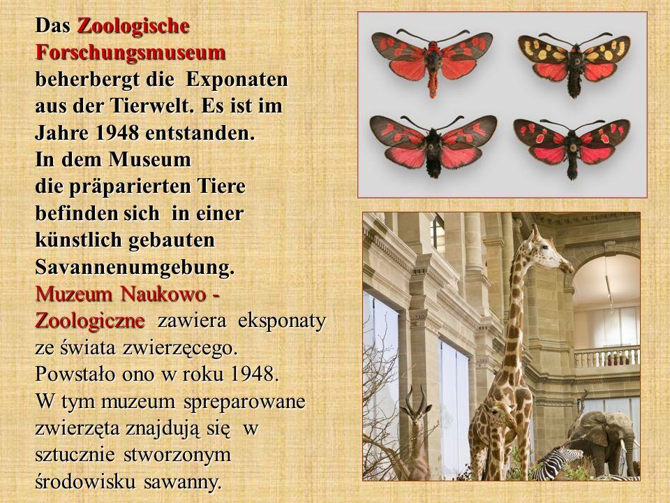 Das Zoologische Forschungsmuseum beherbergt die Exponaten aus der Tierwelt. Es ist im Jahre 1948 entstanden. In dem Museum die präparierten Tiere befi