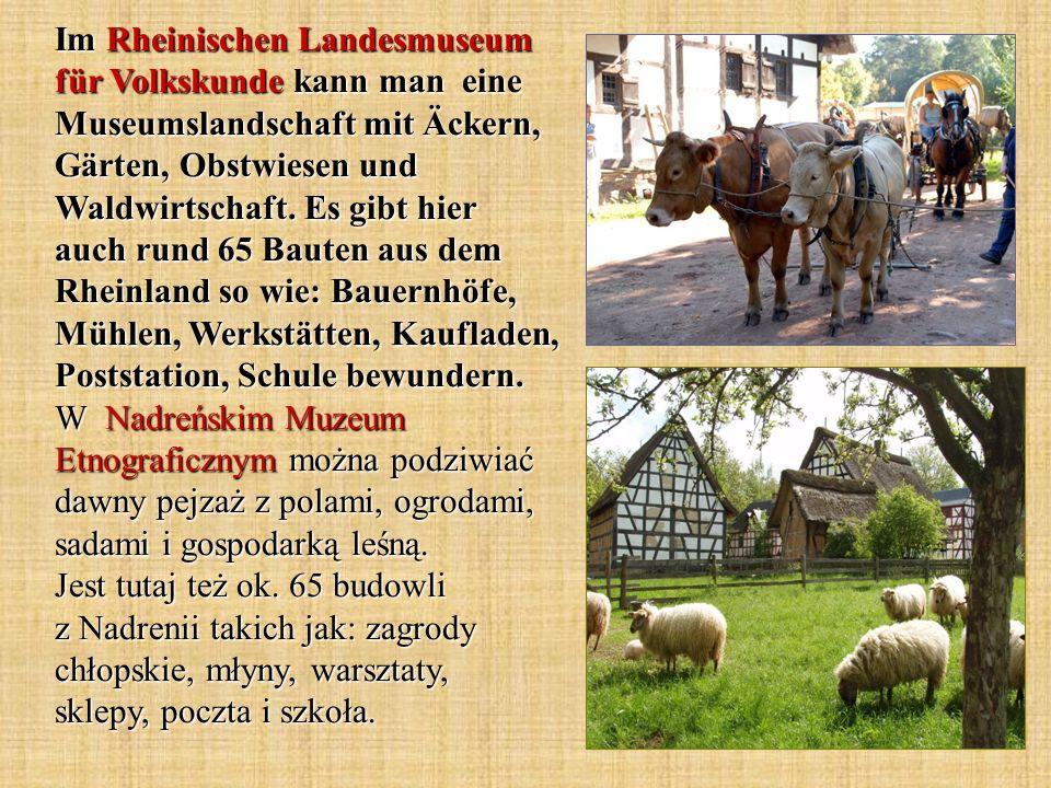 Im Rheinischen Landesmuseum für Volkskunde kann man eine Museumslandschaft mit Äckern, Gärten, Obstwiesen und Waldwirtschaft. Es gibt hier auch rund 6