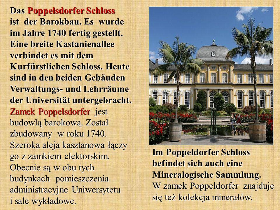 Im Poppeldorfer Schloss befindet sich auch eine Mineralogische Sammlung. W zamek Poppeldorfer znajduje się też kolekcja minerałów. Das Poppelsdorfer S
