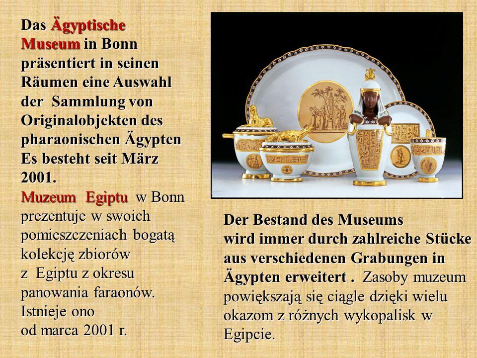 Der Bestand des Museums wird immer durch zahlreiche Stücke aus verschiedenen Grabungen in Ägypten erweitert. Zasoby muzeum powiększają się ciągle dzię