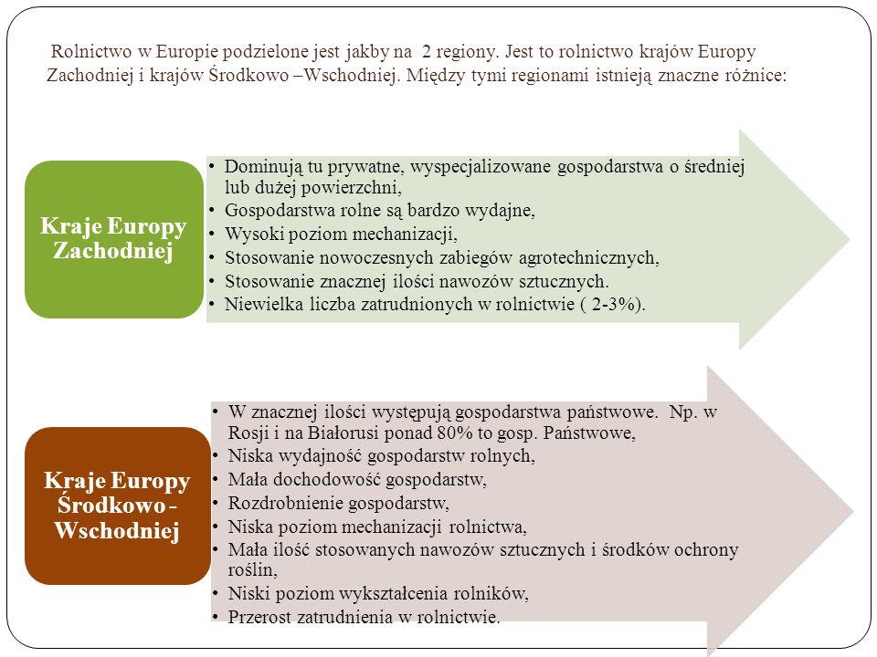 Rolnictwo w Europie podzielone jest jakby na 2 regiony. Jest to rolnictwo krajów Europy Zachodniej i krajów Środkowo –Wschodniej. Między tymi regionam