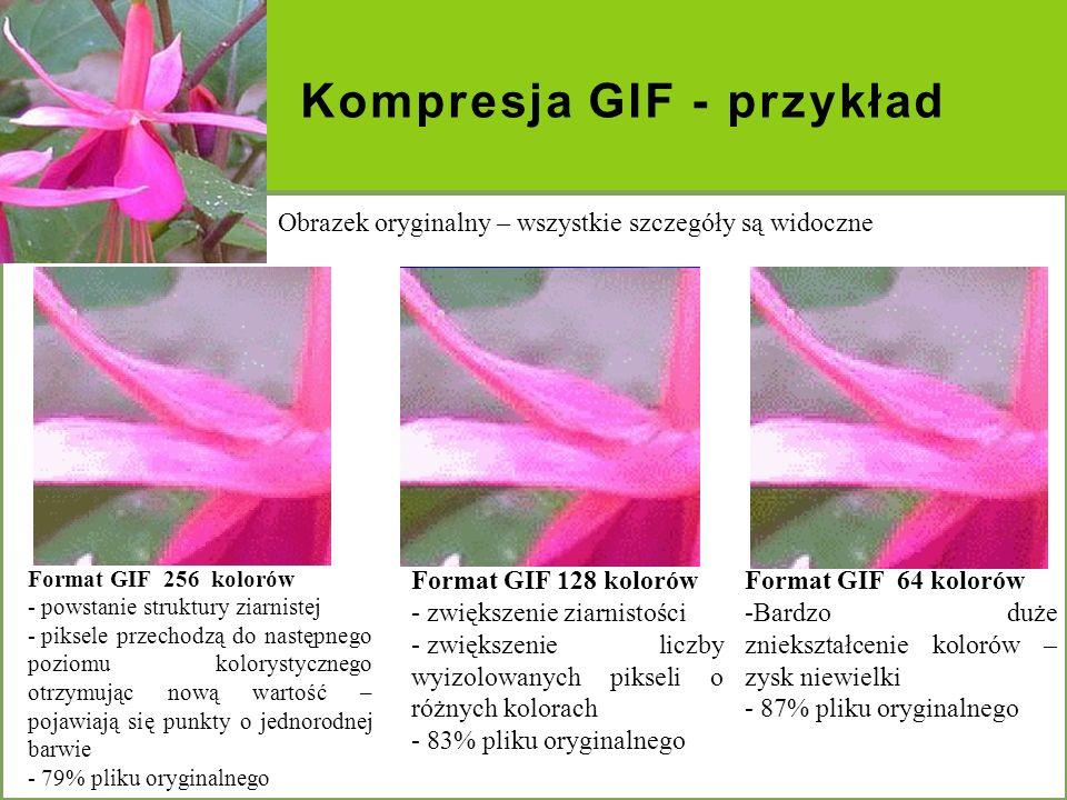 Kompresja GIF - przykład Obrazek oryginalny – wszystkie szczegóły są widoczne Format GIF 128 kolorów - zwiększenie ziarnistości - zwiększenie liczby w