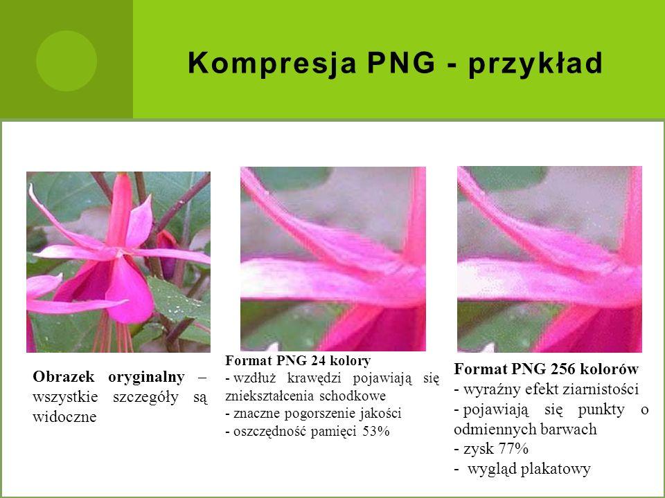 Kompresja PNG - przykład Obrazek oryginalny – wszystkie szczegóły są widoczne Format PNG 256 kolorów - wyraźny efekt ziarnistości - pojawiają się punk