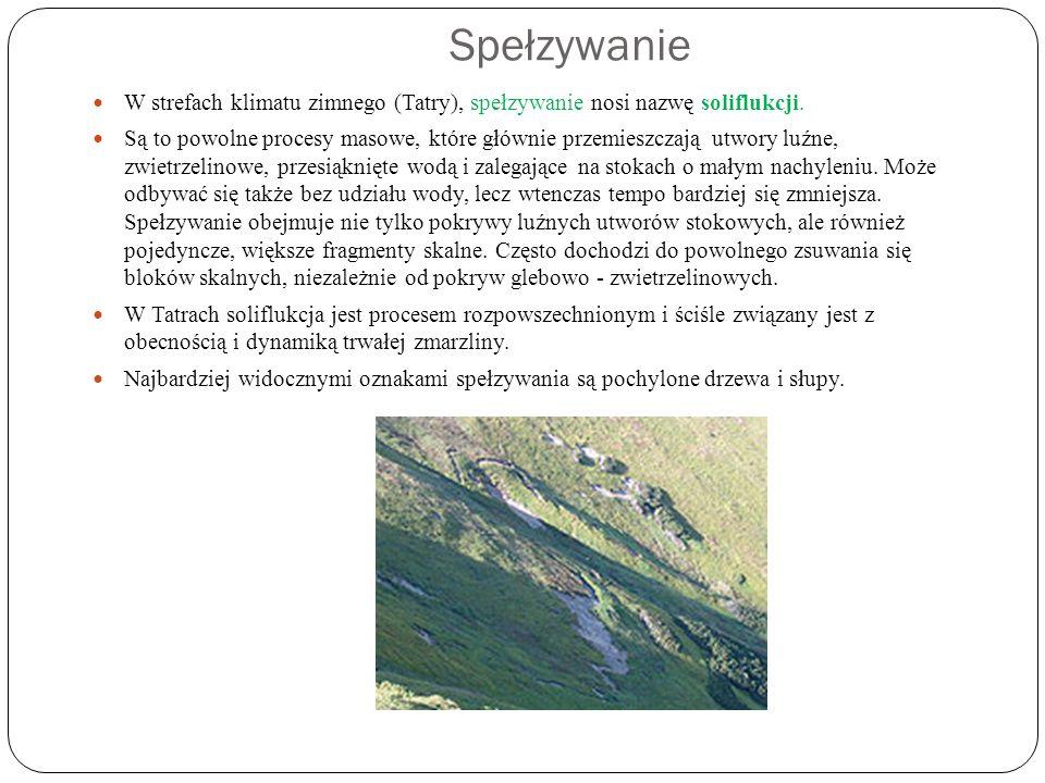 Spełzywanie W strefach klimatu zimnego (Tatry), spełzywanie nosi nazwę soliflukcji. Są to powolne procesy masowe, które głównie przemieszczają utwory