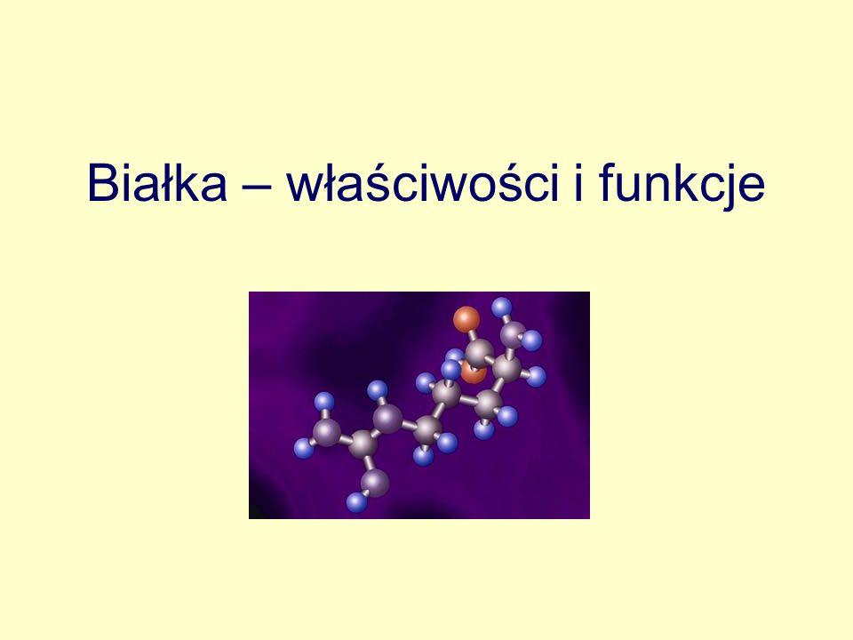 Struktura pierwszorzędowa 1-alanina, 2-walina, 3-seryna, 4-glutaminian,5-cysteina, 6-glutamina, 7-fenyloalanina, 8-metionina, 9-histydyna itd Jest to najniższy poziom organizacji strukturalnej cząsteczki, jest wyznaczona przez sekwencję - kolejność aminokwasów w łańcuchu polipeptydowym.