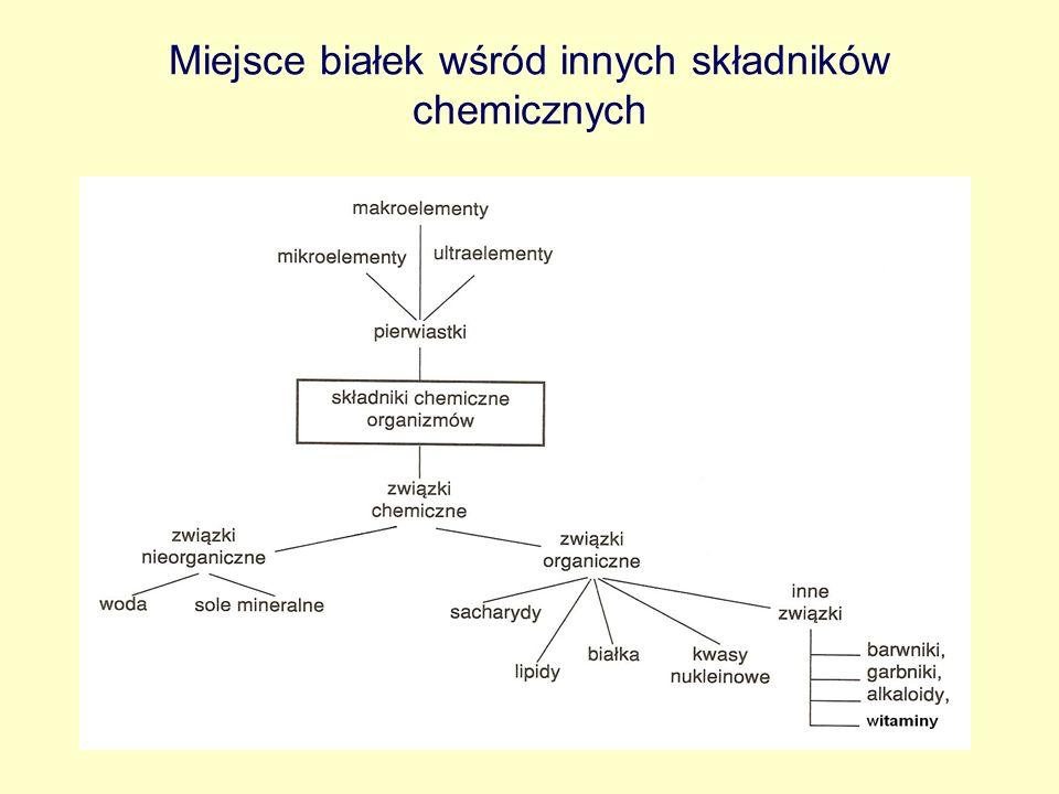 Białka Związki organiczne ogrywające kluczową rolę w świecie istot żywych Są to wielocząsteczkowe biopolimery, w skład których wchodzą: węgiel, wodór, tlen, azot i często siarka Zbudowane z mniejszych podjednostek – monomerów- zwanych aminokwasami