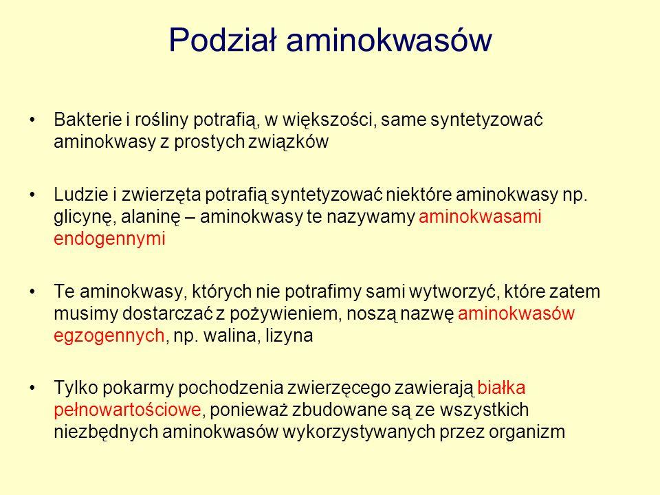 Literatura: Villee i inni, 1996.Biologia. Multico, Warszawa Wiśniewski H, 1998.