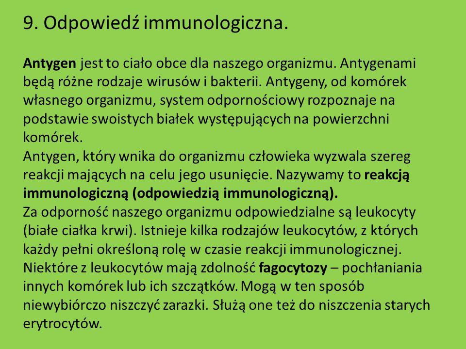 9. Odpowiedź immunologiczna. Antygen jest to ciało obce dla naszego organizmu. Antygenami będą różne rodzaje wirusów i bakterii. Antygeny, od komórek