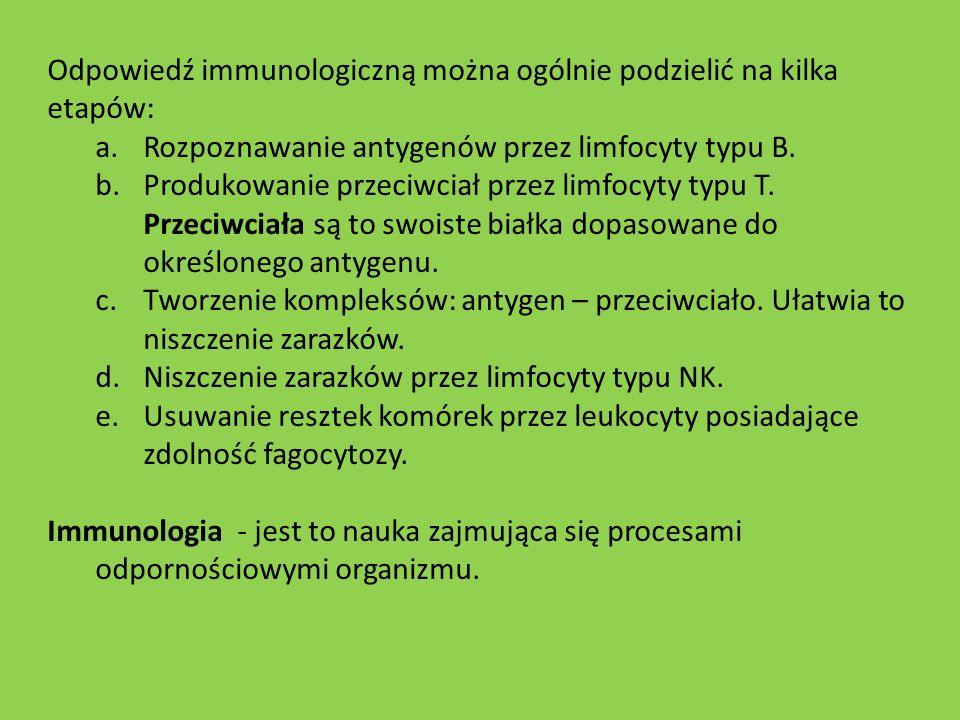 Odpowiedź immunologiczną można ogólnie podzielić na kilka etapów: a.Rozpoznawanie antygenów przez limfocyty typu B. b.Produkowanie przeciwciał przez l