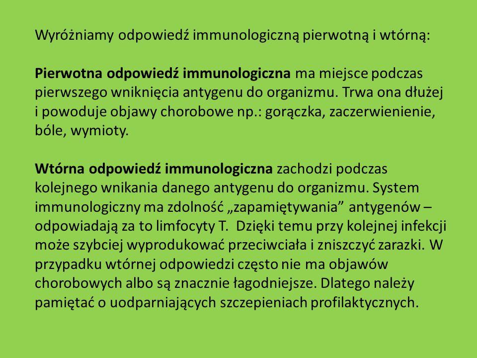Wyróżniamy odpowiedź immunologiczną pierwotną i wtórną: Pierwotna odpowiedź immunologiczna ma miejsce podczas pierwszego wniknięcia antygenu do organi