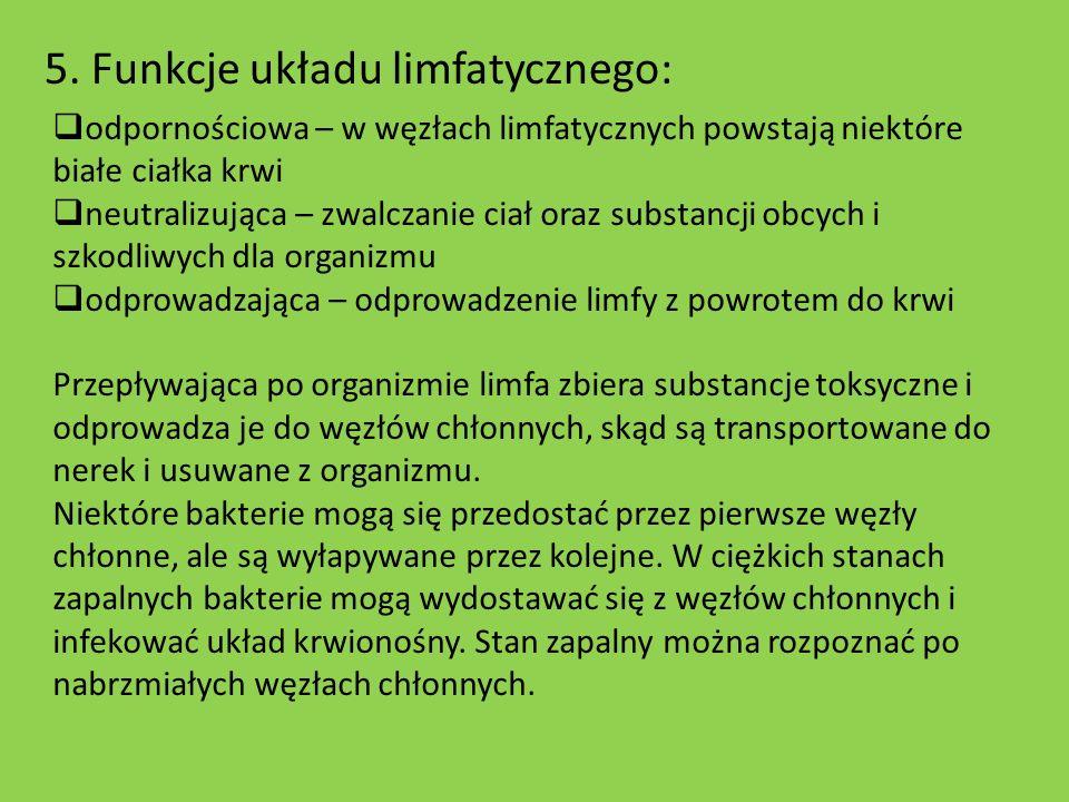 5. Funkcje układu limfatycznego: odpornościowa – w węzłach limfatycznych powstają niektóre białe ciałka krwi neutralizująca – zwalczanie ciał oraz sub
