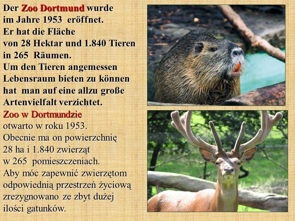 Der Zoo Dortmund wurde im Jahre 1953 eröffnet. Er hat die Fläche von 28 Hektar und 1.840 Tieren in 265 Räumen. Um den Tieren angemessen Lebensraum bie