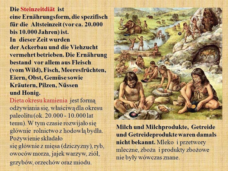Die Steinzeitdiät ist eine Ernährungsform, die spezifisch für die Altsteinzeit (vor ca. 20.000 bis 10.000 Jahren) ist. In dieser Zeit wurden der Acker