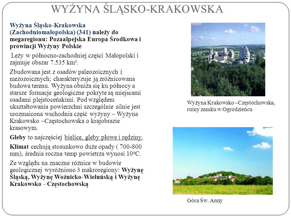 WYŻYNA ŚLĄSKO-KRAKOWSKA Wyżyna Śląsko-Krakowska (Zachodniomałopolska) (341) należy do megaregionu: Pozaalpejska Europa Środkowa i prowincji Wyżyny Pol