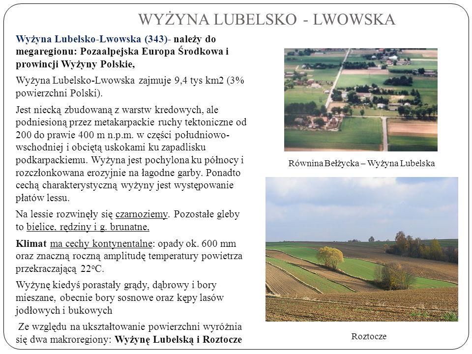 WYŻYNA LUBELSKO - LWOWSKA Wyżyna Lubelsko-Lwowska (343)- należy do megaregionu: Pozaalpejska Europa Środkowa i prowincji Wyżyny Polskie, Wyżyna Lubels