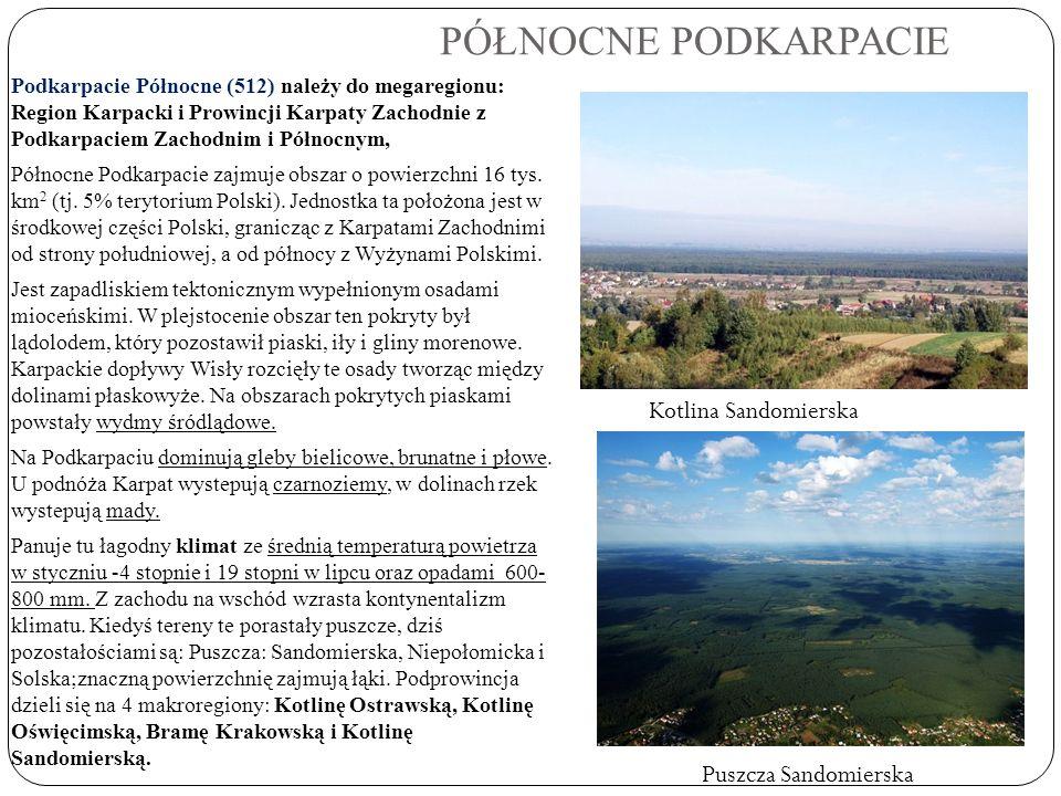 PÓŁNOCNE PODKARPACIE Podkarpacie Północne (512) należy do megaregionu: Region Karpacki i Prowincji Karpaty Zachodnie z Podkarpaciem Zachodnim i Północ