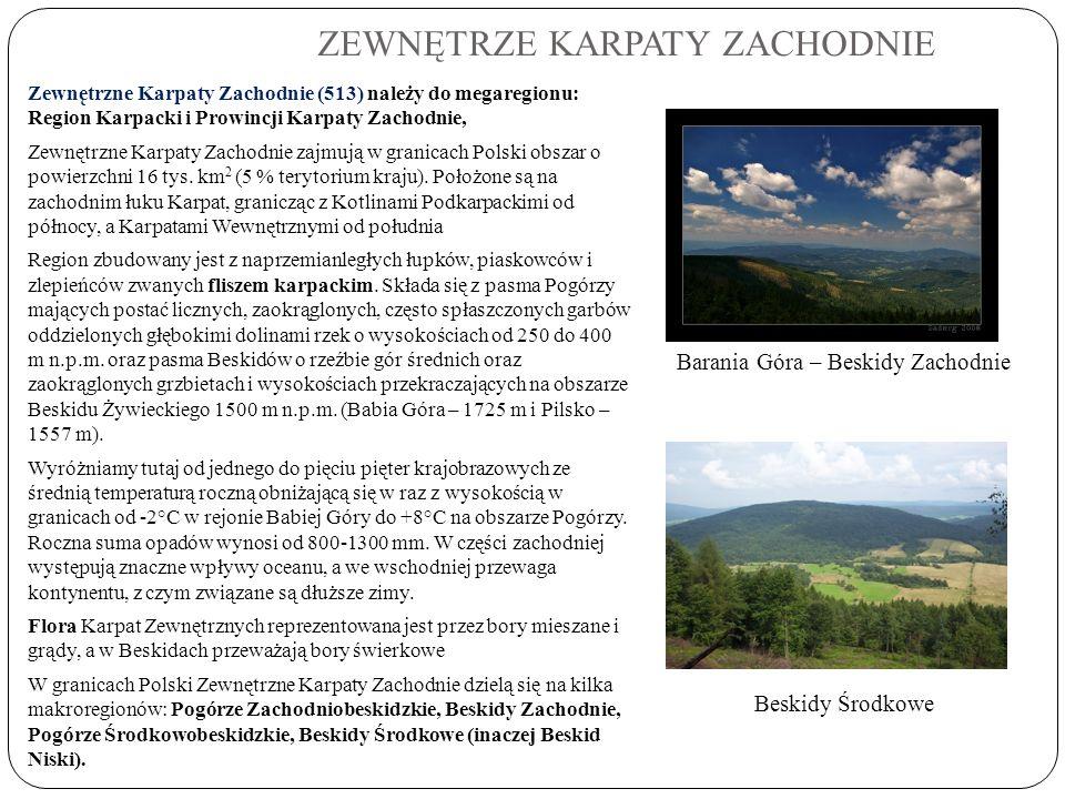 ZEWNĘTRZE KARPATY ZACHODNIE Zewnętrzne Karpaty Zachodnie (513) należy do megaregionu: Region Karpacki i Prowincji Karpaty Zachodnie, Zewnętrzne Karpat