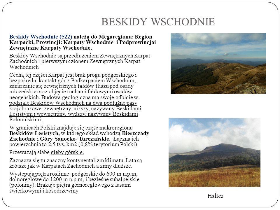 BESKIDY WSCHODNIE Beskidy Wschodnie (522) należą do Megaregionu: Region Karpacki, Prowincji: Karpaty Wschodnie i Podprowincjai Zewnętrzne Karpaty Wsch
