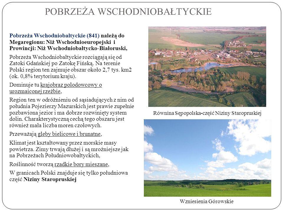 POBRZEŻA WSCHODNIOBAŁTYCKIE Pobrzeża Wschodniobałtyckie (841) należą do Megaregionu: Niż Wschodnioeuropejski i Prowincji: Niż Wschodniobałtycko-Białor