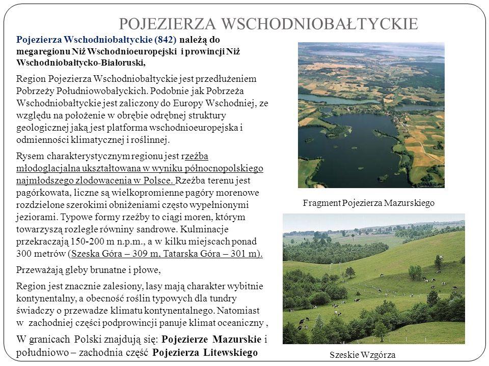 POJEZIERZA WSCHODNIOBAŁTYCKIE Pojezierza Wschodniobałtyckie (842) należą do megaregionu Niż Wschodnioeuropejski i prowincji Niż Wschodniobałtycko-Biał