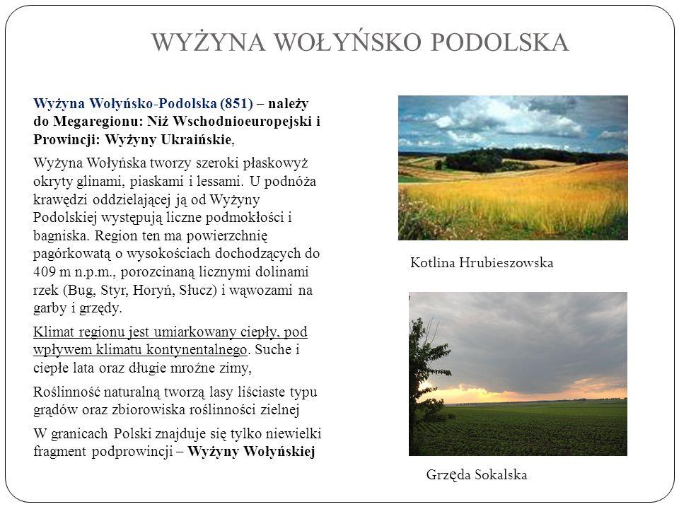 WYŻYNA WOŁYŃSKO PODOLSKA Wyżyna Wołyńsko-Podolska (851) – należy do Megaregionu: Niż Wschodnioeuropejski i Prowincji: Wyżyny Ukraińskie, Wyżyna Wołyńs