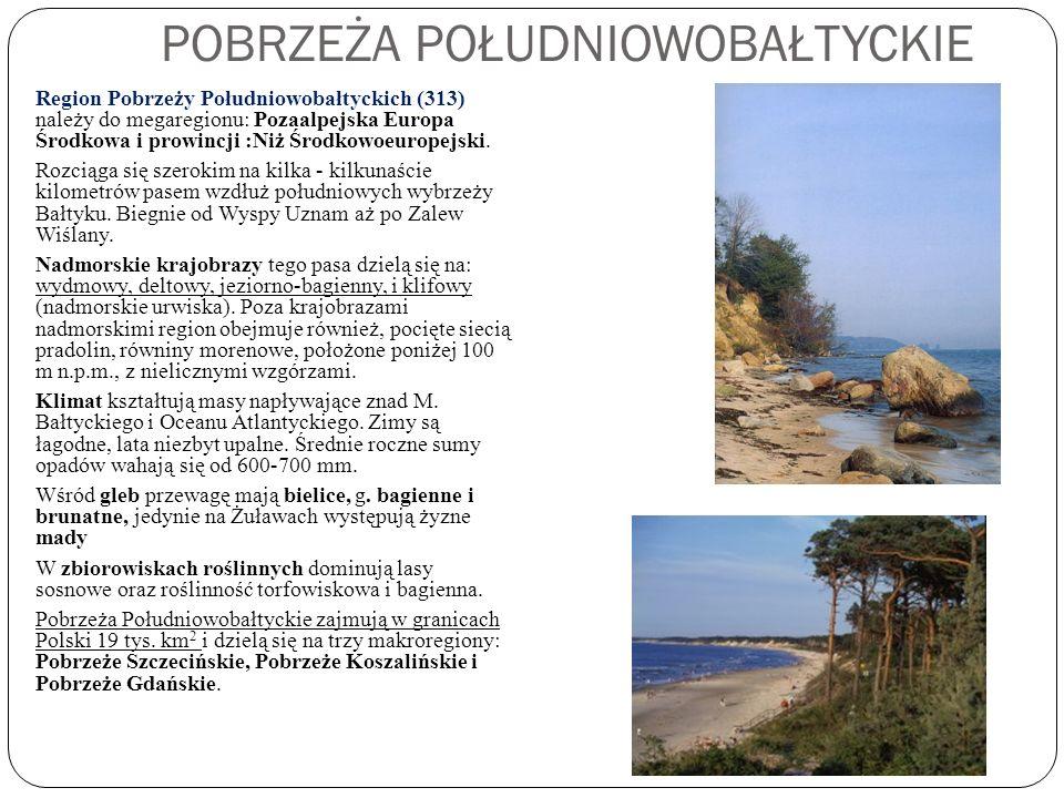 POBRZEŻA POŁUDNIOWOBAŁTYCKIE Region Pobrzeży Południowobałtyckich (313) należy do megaregionu: Pozaalpejska Europa Środkowa i prowincji :Niż Środkowoe