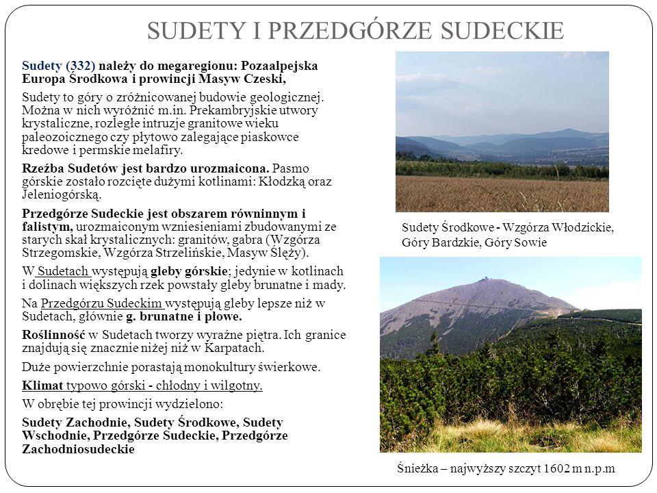 SUDETY I PRZEDGÓRZE SUDECKIE Sudety (332) należy do megaregionu: Pozaalpejska Europa Środkowa i prowincji Masyw Czeski, Sudety to góry o zróżnicowanej