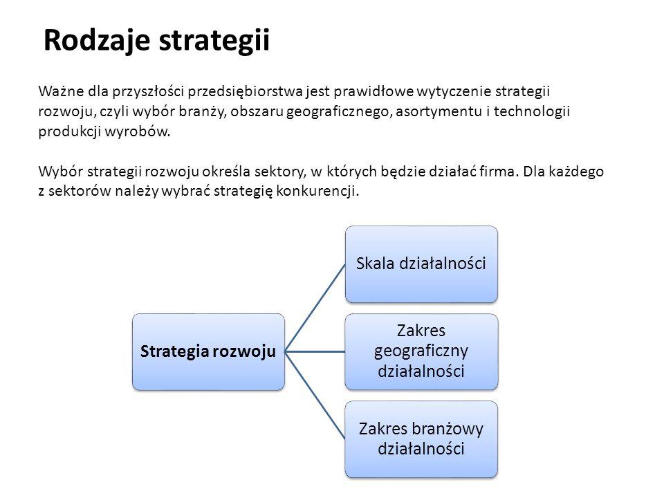 Rodzaje strategii Strategia rozwojuSkala działalności Zakres geograficzny działalności Zakres branżowy działalności Ważne dla przyszłości przedsiębior