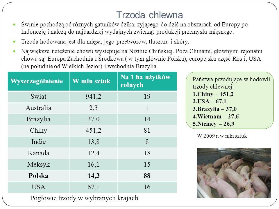 Obszary hodowli trzody chlewnej na świecie Obszary hodowli Centra hodowli