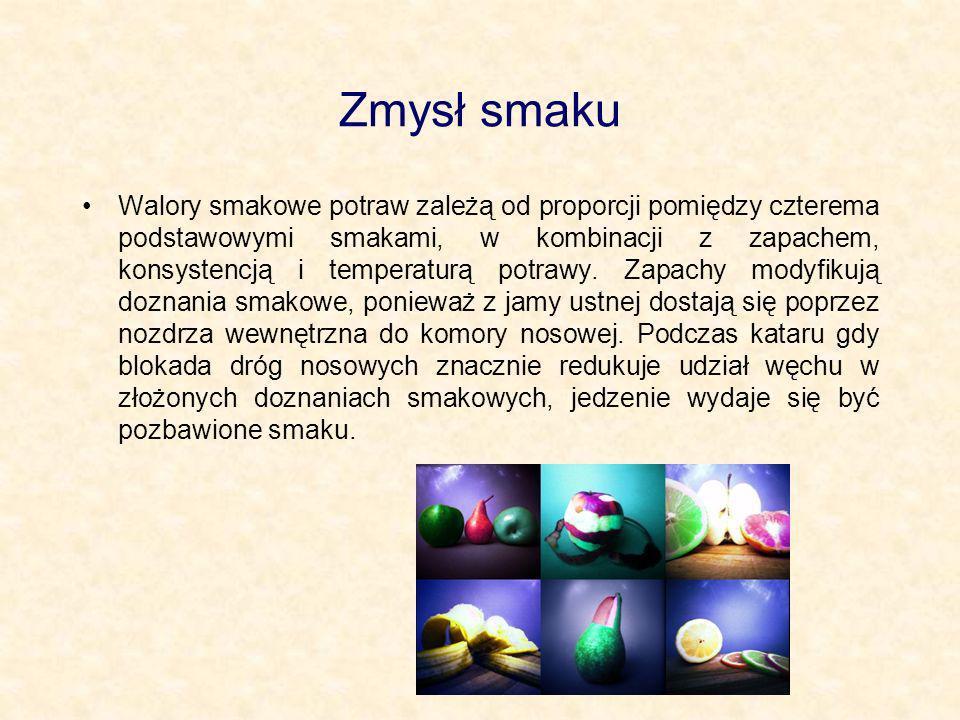 Zmysł smaku Walory smakowe potraw zależą od proporcji pomiędzy czterema podstawowymi smakami, w kombinacji z zapachem, konsystencją i temperaturą potr