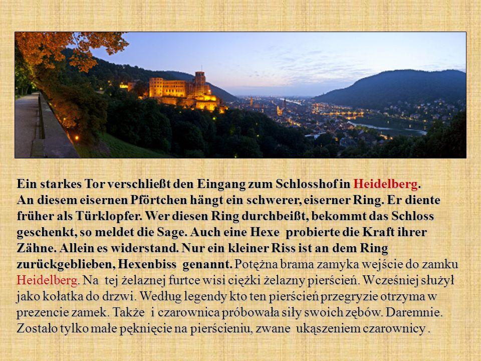 Ein starkes Tor verschließt den Eingang zum Schlosshof in Heidelberg. An diesem eisernen Pförtchen hängt ein schwerer, eiserner Ring. Er diente früher