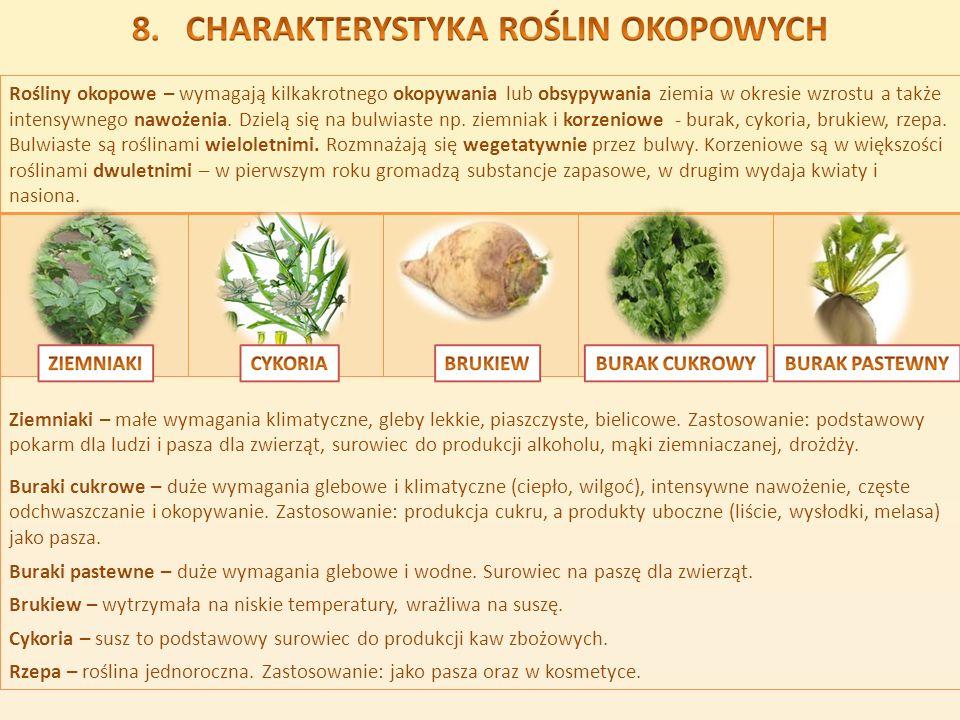Rośliny okopowe – wymagają kilkakrotnego okopywania lub obsypywania ziemia w okresie wzrostu a także intensywnego nawożenia. Dzielą się na bulwiaste n