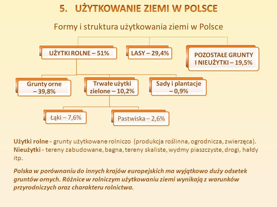 Formy i struktura użytkowania ziemi w Polsce Użytki rolne - grunty użytkowane rolniczo (produkcja roślinna, ogrodnicza, zwierzęca). Nieużytki - tereny