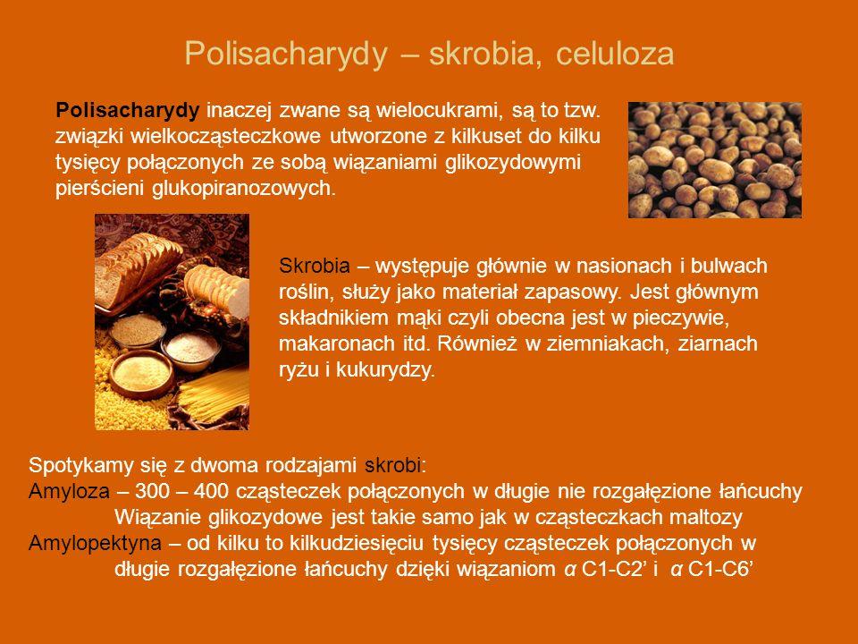 Polisacharydy – skrobia, celuloza Polisacharydy inaczej zwane są wielocukrami, są to tzw. związki wielkocząsteczkowe utworzone z kilkuset do kilku tys