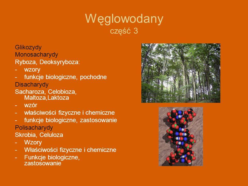 Węglowodany część 3 Glikozydy Monosacharydy Ryboza, Deoksyryboza: - wzory -funkcje biologiczne, pochodne Disacharydy Sacharoza, Celobioza, Maltoza,Lak