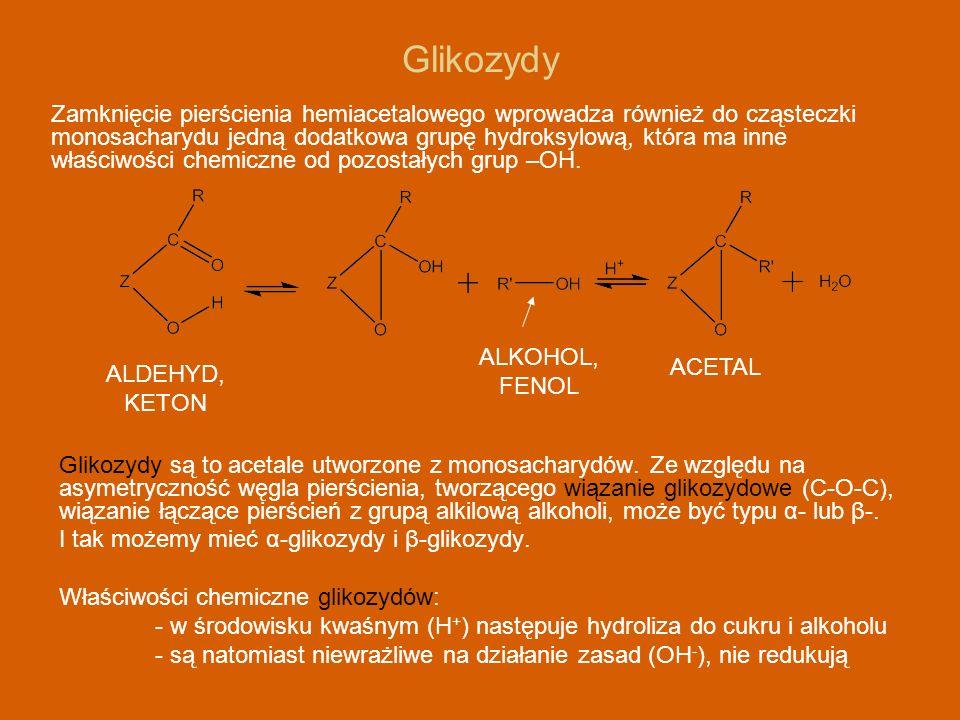 Glikozydy są to acetale utworzone z monosacharydów. Ze względu na asymetryczność węgla pierścienia, tworzącego wiązanie glikozydowe (C-O-C), wiązanie