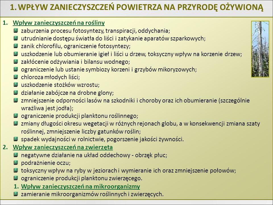 1.WPŁYW ZANIECZYSZCZEŃ POWIETRZA NA PRZYRODĘ OŻYWIONĄ 1.Wpływ zanieczyszczeń na rośliny zaburzenia procesu fotosyntezy, transpiracji, oddychania; utru