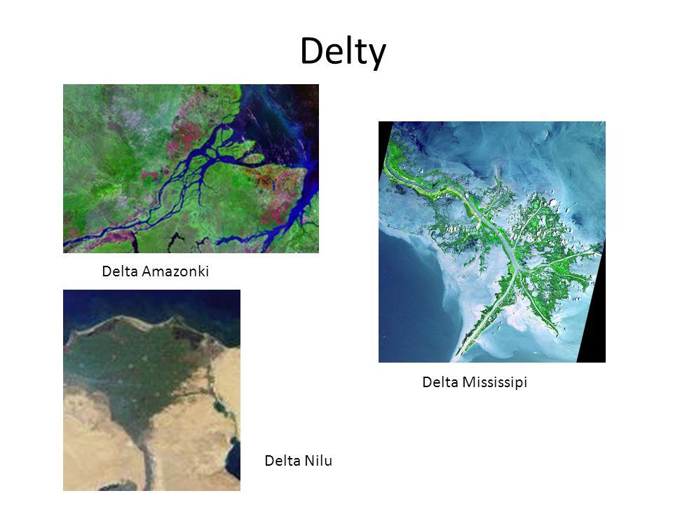 Delty Delta Amazonki Delta Mississipi Delta Nilu