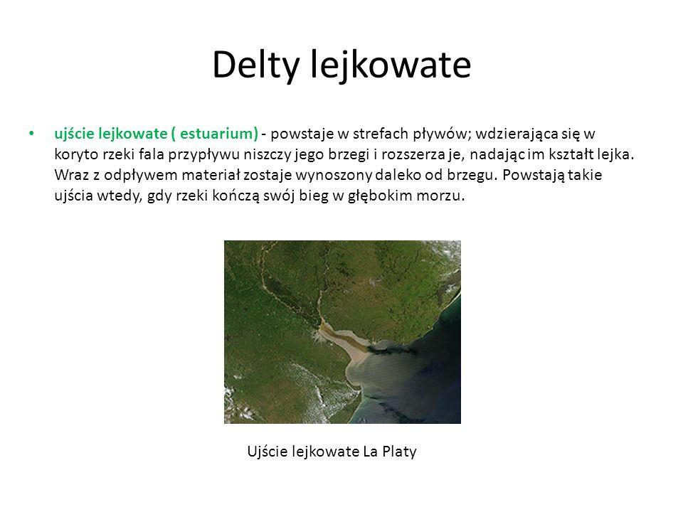 Delty lejkowate ujście lejkowate ( estuarium) - powstaje w strefach pływów; wdzierająca się w koryto rzeki fala przypływu niszczy jego brzegi i rozsze